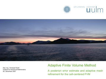 Adaptive Finite Volume Method - Computational Science Center ...