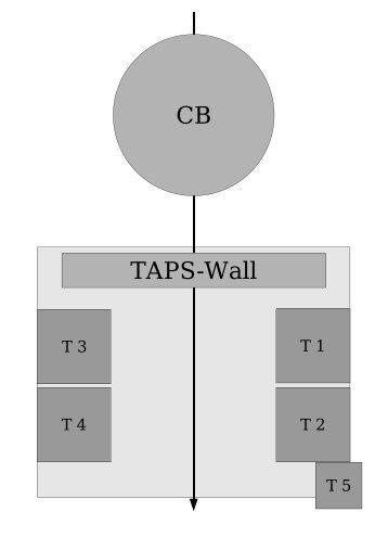 CB TAPS-Wall - A2 Mainz