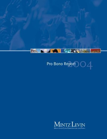 Pro Bono Report 2004 - Mintz Levin