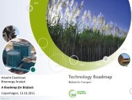 Anselm Eisentraut Bioenergy Analyst A Roadmap for ... - Bioenergi