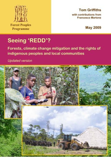 Seeing 'REDD'? - United Nations Framework Convention on Climate ...