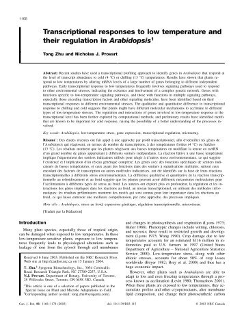 Transcriptional responses to low temperature and their regulation in ...