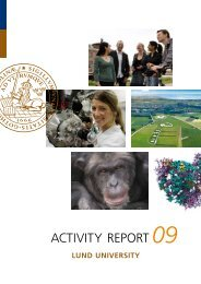 ACTIVITY REPORT - Lund University - Lunds universitet