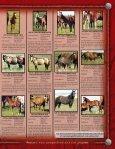 Lauing Mill Iron L Ranch Moreau River Quarter Horses - Page 3