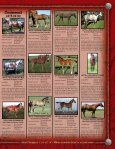 Lauing Mill Iron L Ranch Moreau River Quarter Horses - Page 7