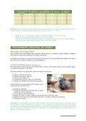 Guía de Procesamiento Industrial - WWF - Page 7