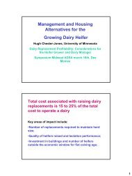 Management and Housing Alternatives for the Growing Dairy Heifer