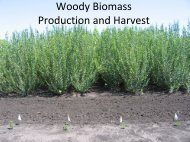 Woody Biomass Production and Harvest
