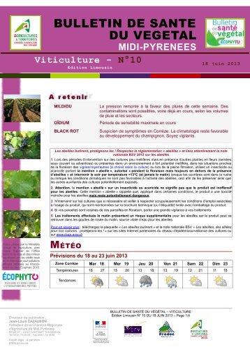 Etat g n ral de la vigne chambre d 39 agriculture des for Chambre agriculture 06