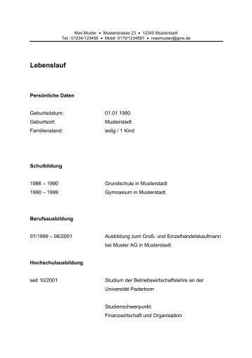 Groß Allgemeine Konstruktion Lebenslauf Probe Ideen ...