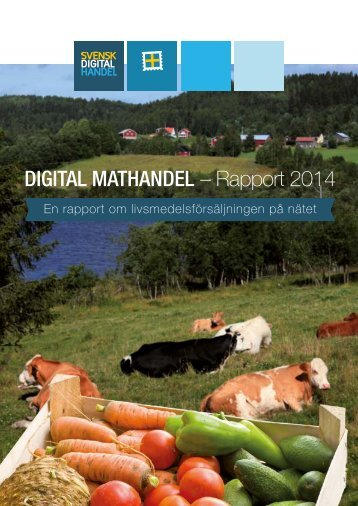 rapport_digital-mathandel-2014_LU6