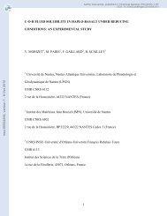 COH fluid solubility in Haplo-basalt under reducing - HAL UNIV ...