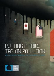 Price Tag On Pollution Policy Brief - The Climate Institute
