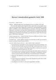 Kursus i emnekredsen geometri, forår 2008 - dirac
