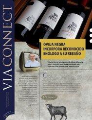 VIA CONNECT 05s - Via Wines