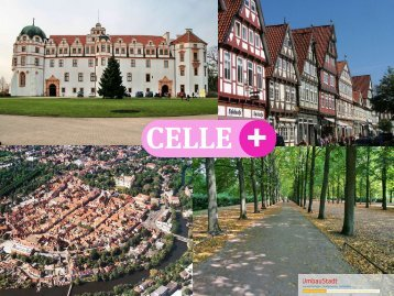17,1% 22,6% 43,7% 16,5% - Stadt Celle