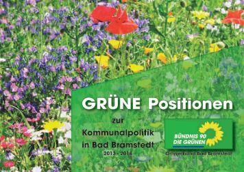 Grüne Positionen 2013-2018 - Bündnis90/DIE GRÜNEN Bad ...