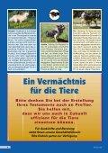 Heft 4/2002 - Pro Tier - Page 6
