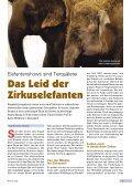 Heft 4/2002 - Pro Tier - Page 7