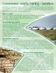 CAFO 101 Factsheet - Citizens Campaign for the Environment