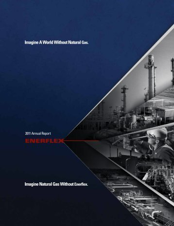 2011 Annual Report - Enerflex