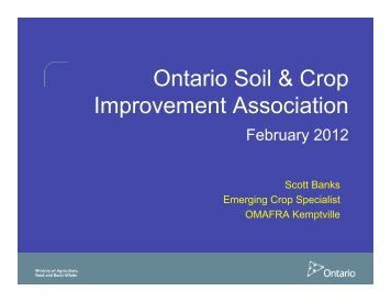 Nitrogen Rates on Established Switchgrass - Ontario Soil and Crop ...
