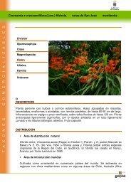 Crocosmia x crocosmiiflora (Lem.) Nichols ... - Interreg Bionatura