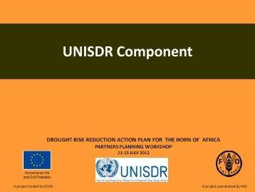 UNISDR Component - Disaster risk reduction
