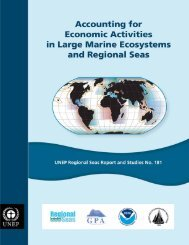 This report, Accounting for Economic Activities in Large Marine ...