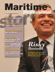Maritime Professional on Financial Risk in shipping - bdp1 ...