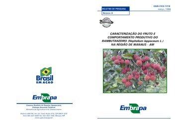 Boletim 4.pdf - Embrapa