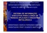 sistema de informação executiva para a área de vendas aplicado à ...