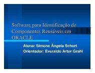 Software para Identificação de Componentes Reusáveis em ORACLE