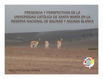 04 Ucsm.pdf - Universidad Católica de Santa María