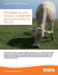 Why livestock and humane, sustainable agriculture matter at ... - WSPA