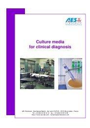 PDF Catalogue - bds-cy.com