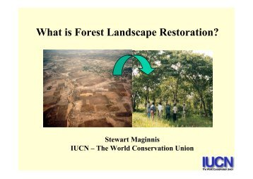 What is Forest Landscape Restoration?