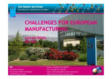 Ion Beam Services