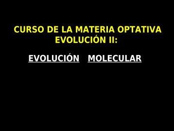 evolución molecular
