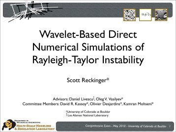 Wavelet-Based Direct Numerical Simulations of Rayleigh-Taylor ...