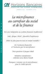 La microfinance au carrefour du social et de la finance - Etudes ...