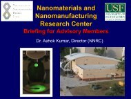 present - Nanotechnology Research & Education Center - University ...