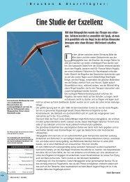 Eine Studie der Exzellenz - Flying-directory.com