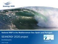 National MSP in the Mediterranean Sea: Spain ... - Seanergy 2020