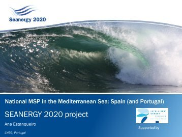 National MSP in the Mediterranean Sea: Spain ... - Seanergy 2020