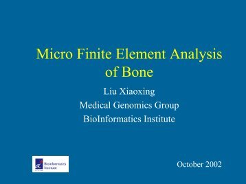 Micro Finite Element Analysis of Bone - Bioinformatics Institute