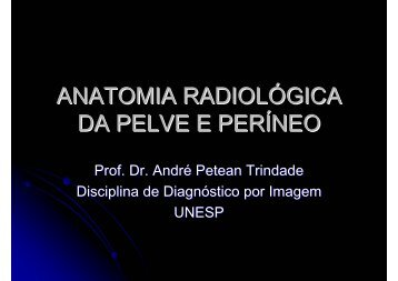 ANATOMIA RADIOLÓGICA DA PELVE E PERÍNEO - Unesp