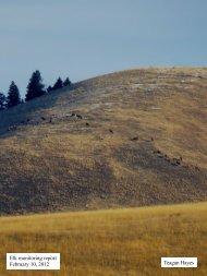 Elk monitoring report February 10, 2012 Teagan Hayes - MPG Ranch