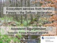 the Selfoss declaration - SNS