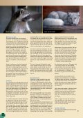 Groen en gevaarlijk - Vrienden van Blijdorp - Page 4